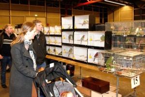 Vogelmarkt 9 maart 2013